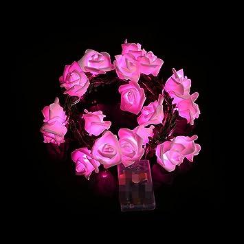 Navidad Decoracion Interior Exterior Luces Caja de 20 Celdas LED para Fiesta de Jardín Decorativas para Navidad Jardín Entrada Fiestas Boda Decoración: Amazon.es: Bricolaje y herramientas