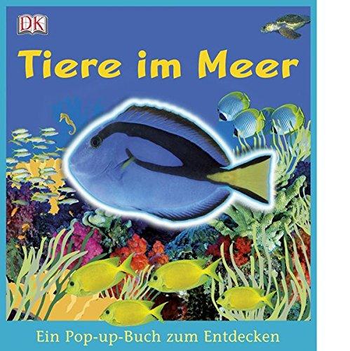 Tiere im Meer (Ein Pop-up-Buch zum Entdecken)