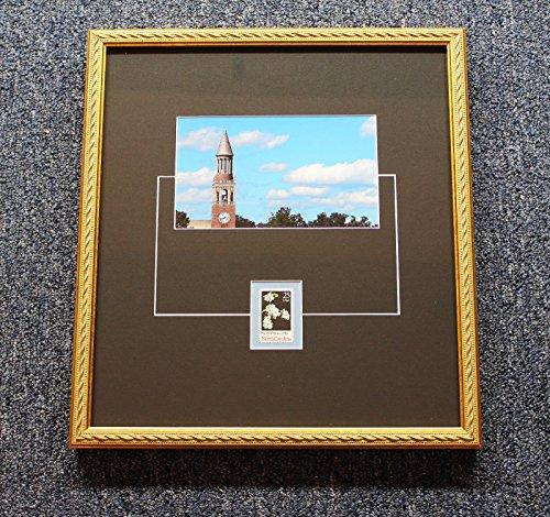 University of North Carolina Chapel Hill Bell Tower Color Photograph (North Carolina Chapel Hill Framed)