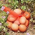 100Pcs Reusable Mesh Nylon Netting for Vegetables Produce Toys ,Red
