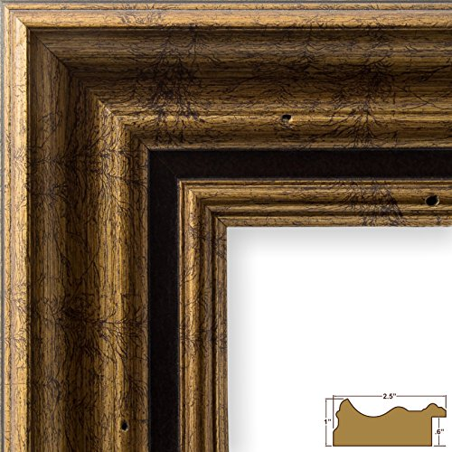 Craig Frames 81285100 12 by 18-Inch Picture Frame, Solid Wood, 2.5-Inch Wide, Aged Gold (Aged Gold Wall)