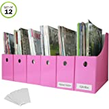 Evelots Magazine File Holder-Organizer-Full 4 Inch Wide-Pink-with Labels-Set/12