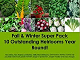 10 NON-GMO, Non Hybrid, Untreated Premium Quality Fall & Winter Vegetable Heirloom Seeds Set Pack