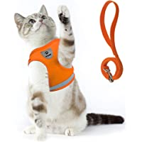 Supet Cat Harness and Leash Set for Walking Cat and Small Dog Harness Soft Mesh Puppy Harness Adjustable Cat Vest…