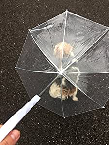 Clear Dog Rain Umbrella with Leash by Midlee