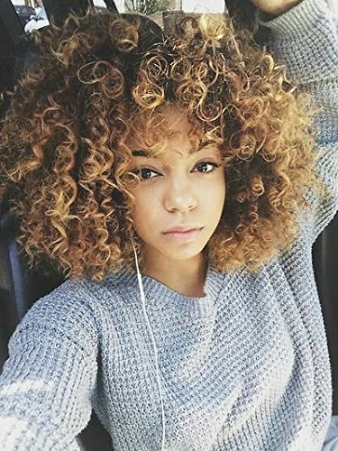 AisiBeauty Short Curly Wigs for Black Women Synthetic Hair Blonde and Brown Afro Wig with a Free Cap -