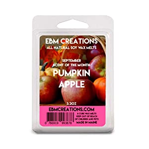 Pumpkin Apple - September 2020 Scent Of The Month - Scented All Natural Soy Wax Melts - 6 Cube Clamshell 3.2oz Highly Scented!