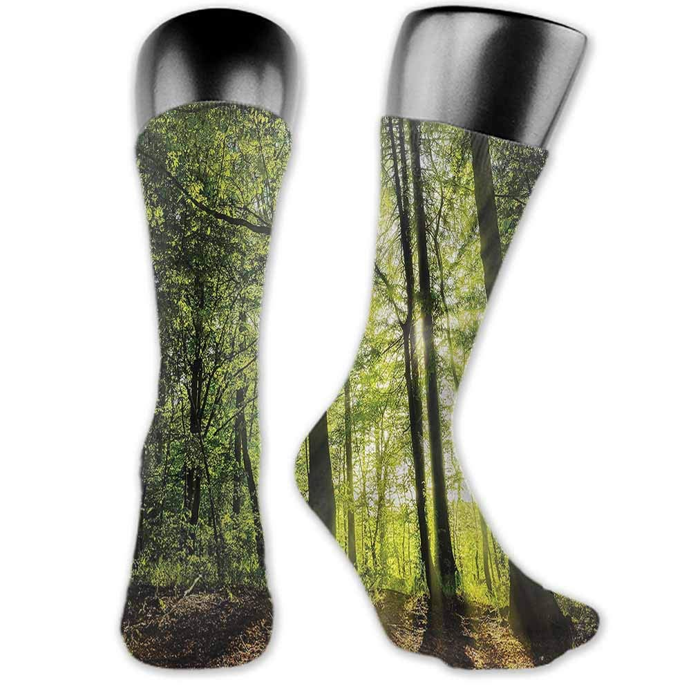 Women Beautiful Colorful Socks Forest,Summer Branches Tranquil,socks men pack