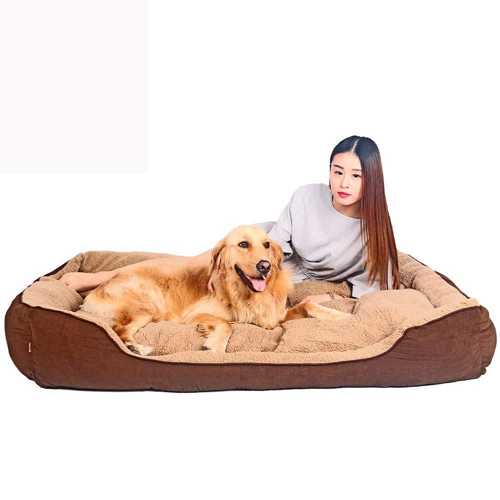 Medium Dog Bed Animals Favorite New Rectangle Pet Bed