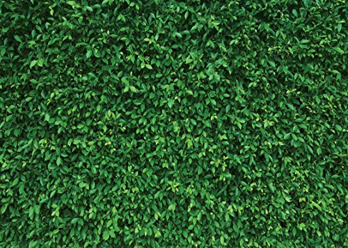 LYWYGG 7x5FT Green Leaves Photography Backdrops Mmicrofiber Nature Backdrop Birthday Background for Birthday Party Seamless Photo Booth Prop Backdrop CP-87 by LYWYGG (Image #1)