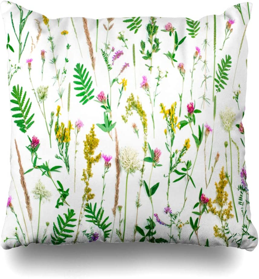 Ahawoso Throw Pillow Cover Square 16x16 Fern Aster Summer Botanical Wildflowers Leaves On Fresh Nature Bloom Blooming Blossom Botany Bouquet Design Zippered Cushion Case Home Decor Pillowcase