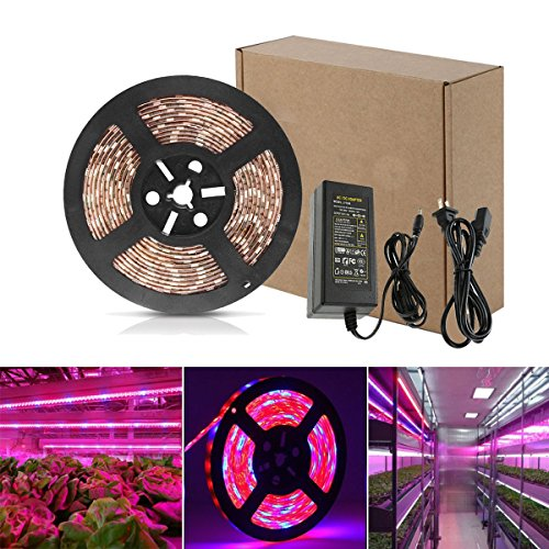 Yeahplus LED Plant Grow Strip Light Kit,16.4ft/5m 5050 Waterproof Full Spectrum Red Blue 4:1 Growing Lamp Aquarium Greenhouse Hydroponic Pant Garden Flowers (5M)