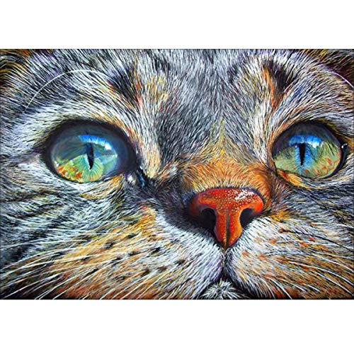 MXJSUA 5D Diamond Painting Full Round Drill Kits for Adults Pasted Embroidery Cross Stitch Arts Craft for Home Wall Decor Blue-Eyed Cat -