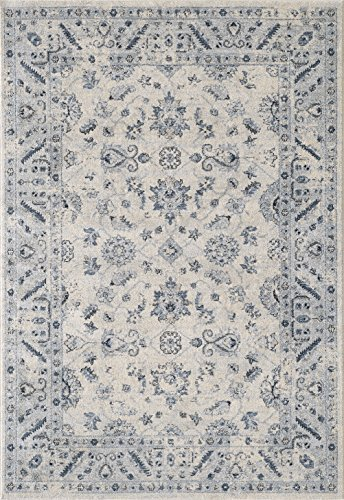 Abani Rugs Ivory Blue Distressed Floral Motif Area Rug Geometric Border Vintage Style Accent, Troy Collection Turkish Made Superior Comfort Construction Stain Shed Resistant, 4 x 6 Feet