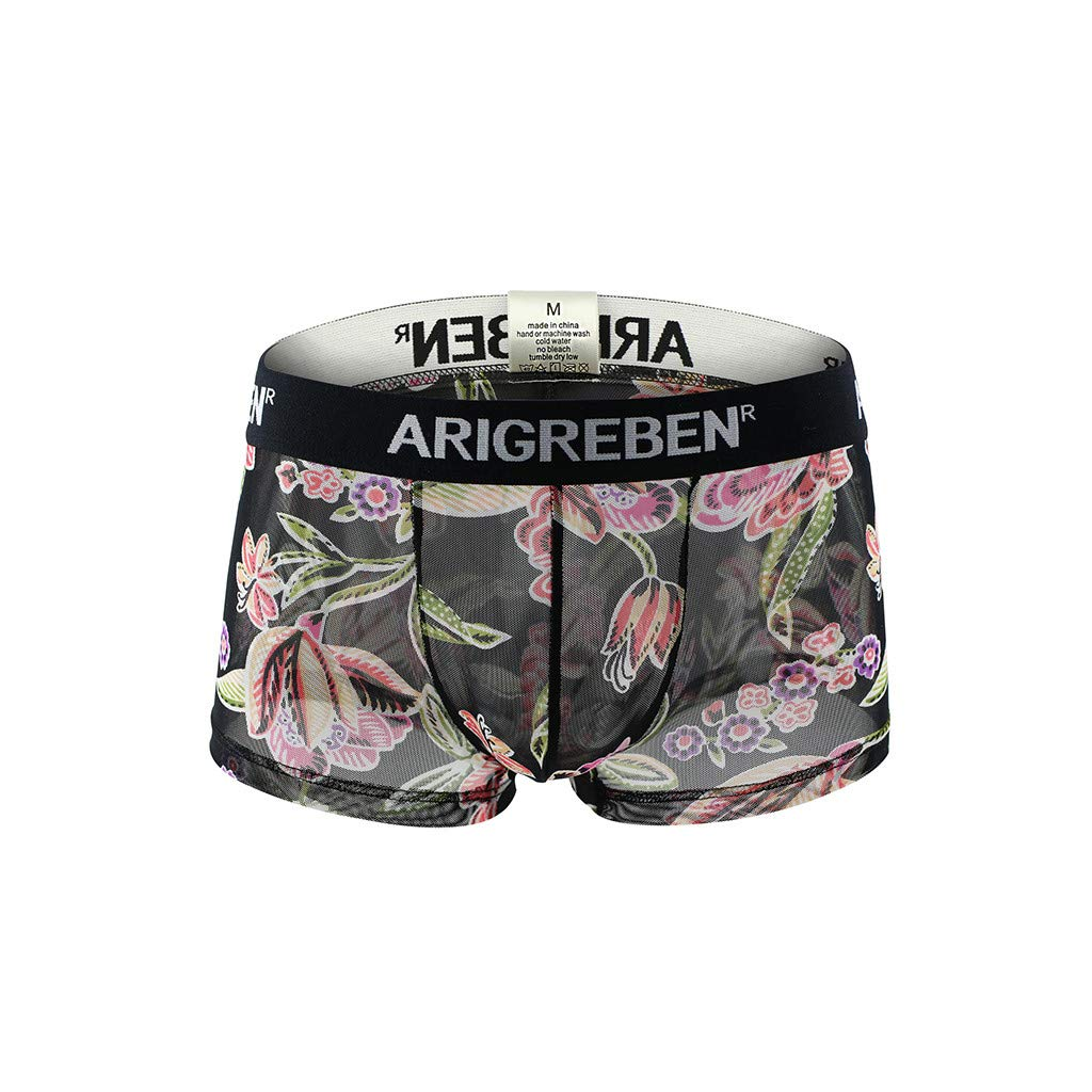 Quelife Mens Boxer Briefs Breathable Underwear Raised Print Arigrebren Sexy Four-Corner Shorts (A,L)