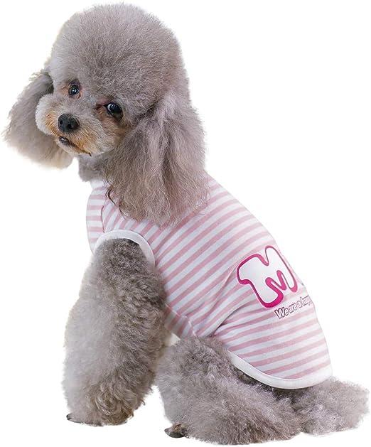 Handfly Camiseta de Perro para Perros Camiseta de Perros para Perros pequeños Perros Camisetas de Verano Ropa para Perros Mascotas Perros Gato Chalecos Camisetas Ropa para Perros pequeños: Amazon.es: Productos para mascotas