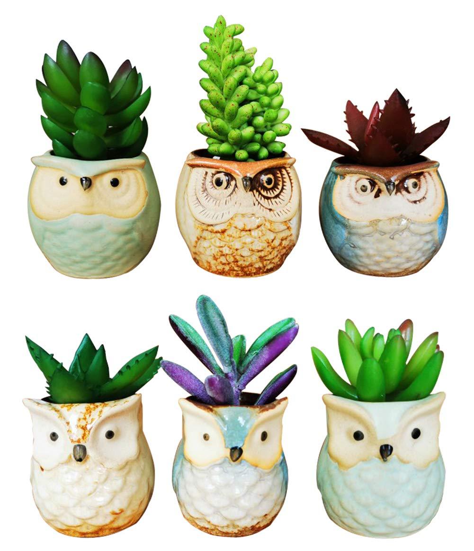 LANKER 6 Pack 2.5 Inch Mini Owl Pots Flowing Glaze Ceramic Succulent Planter Plant Container 2.5 inch 6pcs