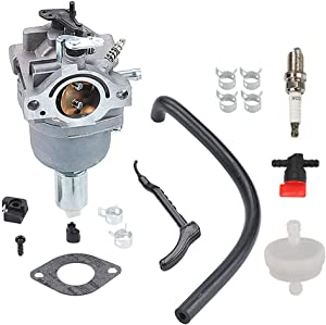 Harbot 799727 Carburetor for Briggs and Stratton 698620 791886 495935 690194 498061 499153 287707 287777 28N707 28N777 28P777 28Q777 Engines