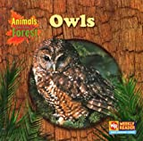 Owls, JoAnn Early Macken, 083684484X