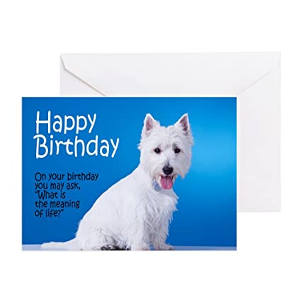 Amazon Cafepress Westie Birthday Card Greeting Card Note