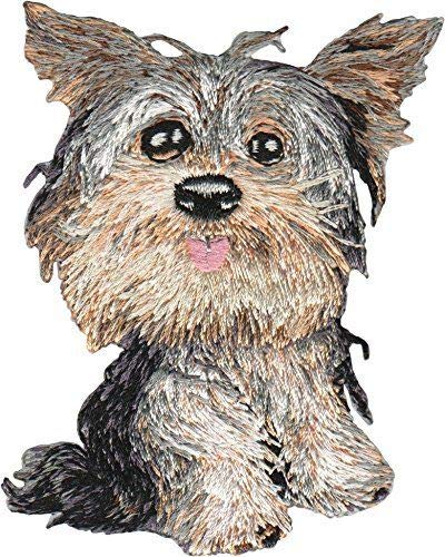 (Animal Club Yorkie Embroidered Iron On Patch - Yorkshire Terrier Dog Puppy 146-G)