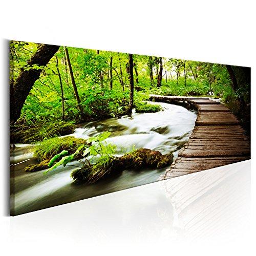 Bilder 100x40 cm - XL Format - Leinwand - Fertig Aufgespannt - Top - Wandbilder - Wand Bild - Kunstdrucke - Wandbild - Wald grün Baum Natur Landschaft c-B-0151-b-a 100x40 cm B&D XXL