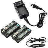 DSTE 2-pack Rechange Batterie et DC01E Voyage Chargeur pour Sony NP-F550NP-F330NP-F570RV100CCD-TR67 CCD–sc5CCD–sc5/E CCD SC55E CCD-TR818/CCD-TR87CCD-SC55SC6SC65SC7CCD-TR67SC7/E SC8/E SC9CCD-TR67TR1CCD-TR67TR11