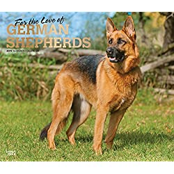 For the Love of German Shepherds 2019 14 x 12 Inch Monthly Deluxe Wall Calendar with Foil Stamped Cover, Animal Dog Breeds (Multilingual Edition)