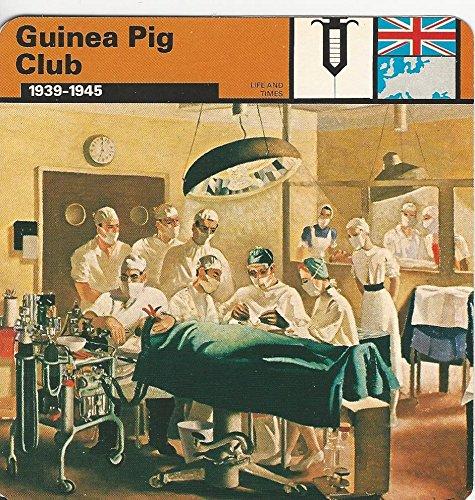 1977 Edito-Service, World War II, #59.21 Guinea Pig (Pig Club)