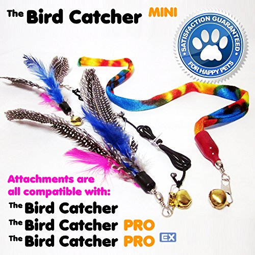 lovely Mini Cat Feather Wand Toy Set with 2 Guinea Fowl Feather Refills 1 Ribbon and Wooden Rod