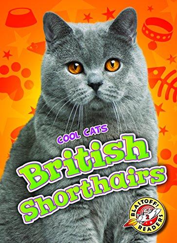 - British Shorthairs (Blastoff Readers. Level 2)