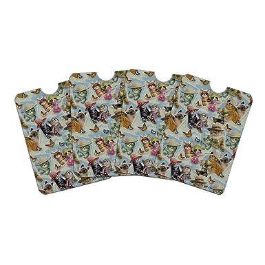 Amazon.com: Gatos enmarcados gatitos en sombreros mariposas ...