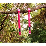 Tree Swing Hanger Straps Kit – 5 Feet Long, Holds 2200 Lbs – Durable Seat Belt Material, Stainless Steel Carabiner for Hanging Hammock and Discs – Weather and Waterproof - Pink - Set of 2 by EvoSwings