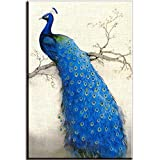 Piy Painting® Canvas Wall Art Prints for Bedroom/Living Room Decoration, Beautiful Peacock Pictures, Blue
