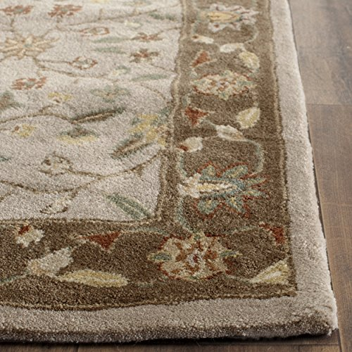 Safavieh Total Perform Collection TLP722B Hand-Hooked Ivory and Taupe Area Rug (8' x 10')