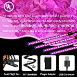 LED Grow Lights for Indoor Plants, JUEYINGBAILI 80W