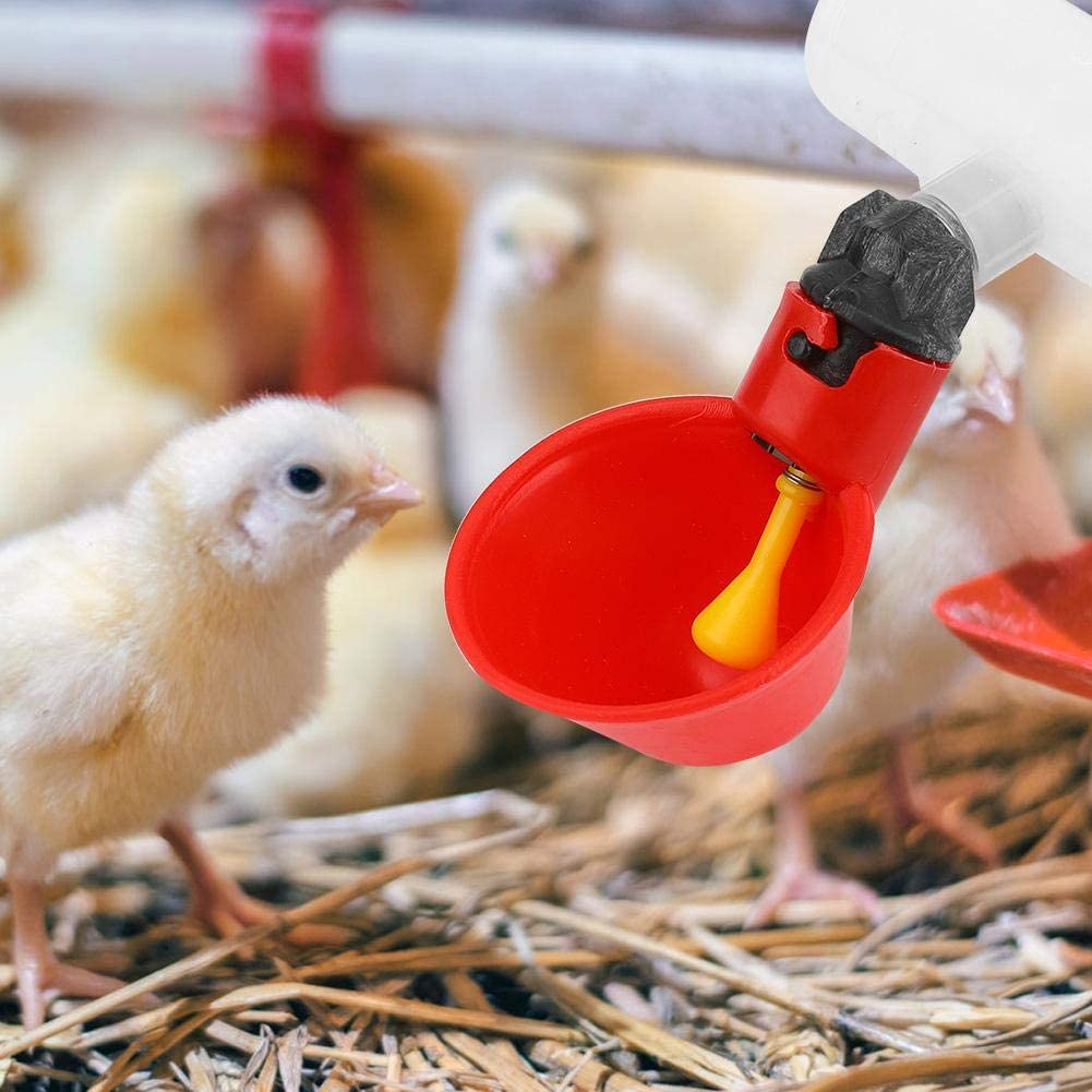Chicken Drinker Cups 10Pcs Automatic Drinkers Waterers Red Plastic Backyards Duck Bird Quail Pigeon Hen Water Feeder Bowl
