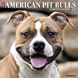 img - for Just American Pit Bull Terriers 2017 Wall Calendar (Dog Breed Calendars) book / textbook / text book