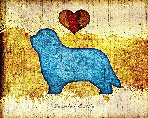 Bearded Collie Dog Breed Art Print by Dan (Bearded Collie Breed)