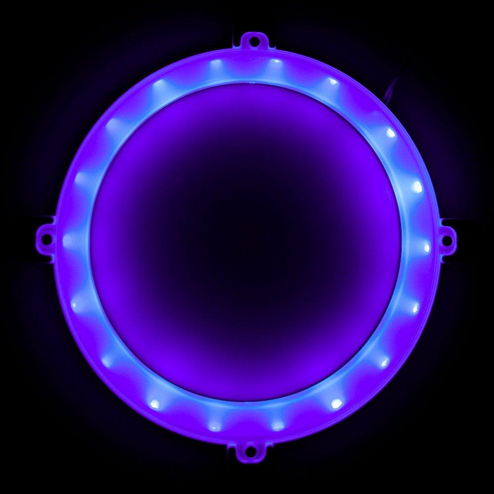 Blinngo Cornhole LED Lights, Ultra Bright Standard Cornhole Night Light for Family Backyard Bean Bag Toss Cornhole Game, Four Color Options, Long-Lasting Over 72 Hours, 2 Set (Purple) by Blinngo