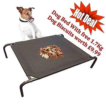 Pet Living Estructura Resistente e Impermeable para Perro, Mascota, Cama para Gato, Exterior e Interior, Resistente: Amazon.es: Productos para mascotas