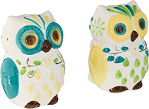 Floral Owl Salt & Pepper Shakers,Hand-painted Ceramic by Boston Warehouse
