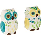 Boston Warehouse Salt and Pepper Set with Floral Owl Design