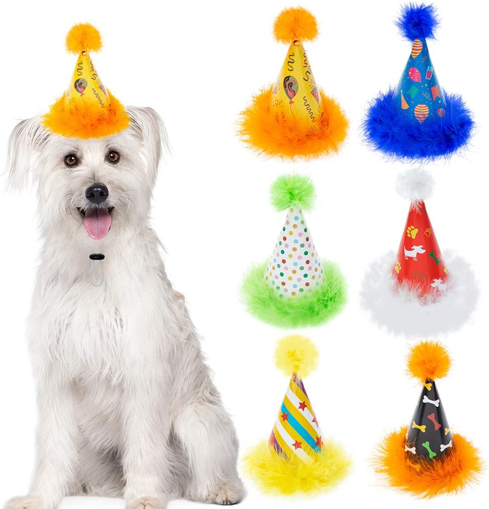 6 Pack Dog Party Hat Set - Cute Pet Cone Hats with Pompon for Dogs Cats Birthday Parties, Adjustable Colorful Caps Amazing Doggie Party Supplies Accessories : Kitchen & Dining