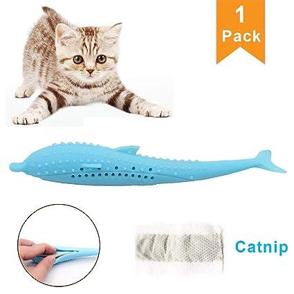 Amazon.com: Cepillo de dientes Vaughenda con forma de pez y ...
