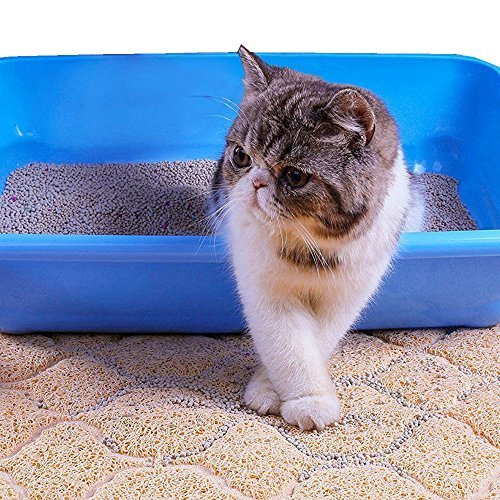 cat litter mat cat box mat extra large cat track mat. Black Bedroom Furniture Sets. Home Design Ideas