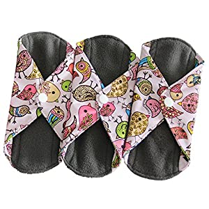 Heart Felt Bamboo Reusable XL Cloth Menstrual Pads (3 Pack, Heavy Flow) with Charcoal Absorbency Layer, Washable Sanitary Napkins, Overnight Long Panty Liners (Bird Print)