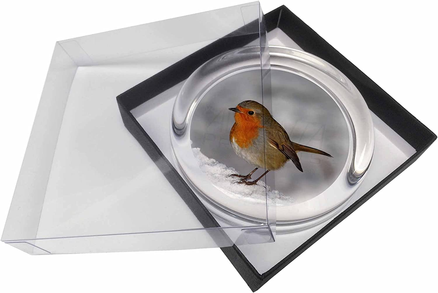 AB-R23PW Robin on Snow Berries Branch Glass Paperweight in Gift Box Christmas P