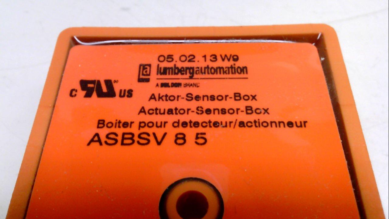 Amazon.com: lumberg Automatización asbsv85, Caja de ...