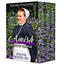 Christian Bookstore | Amish Seeds of Change 3-Book Boxed Set